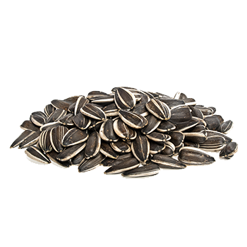 vQm Sunflower seeds